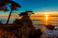 Carmel the Lone Cypress